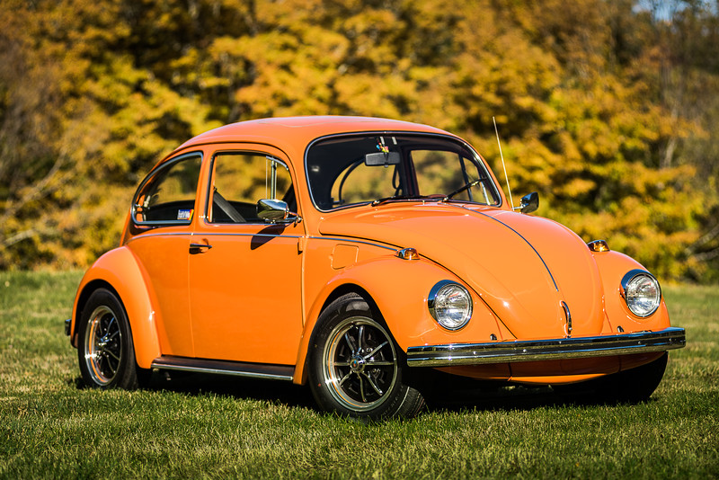 Bobs Orange Bug-50