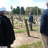 Guided tour of vineyard at Seven Hills