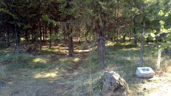 CJ on the Oregon Trail