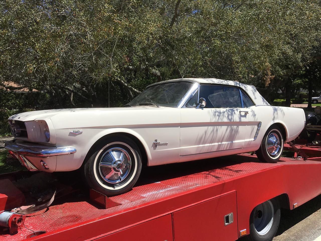 1965 Ford Mustang convertible (Destin , Florida to Bradenton, Florida)