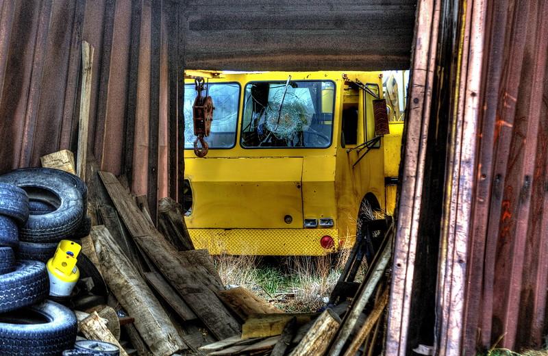 Yellow & Rust