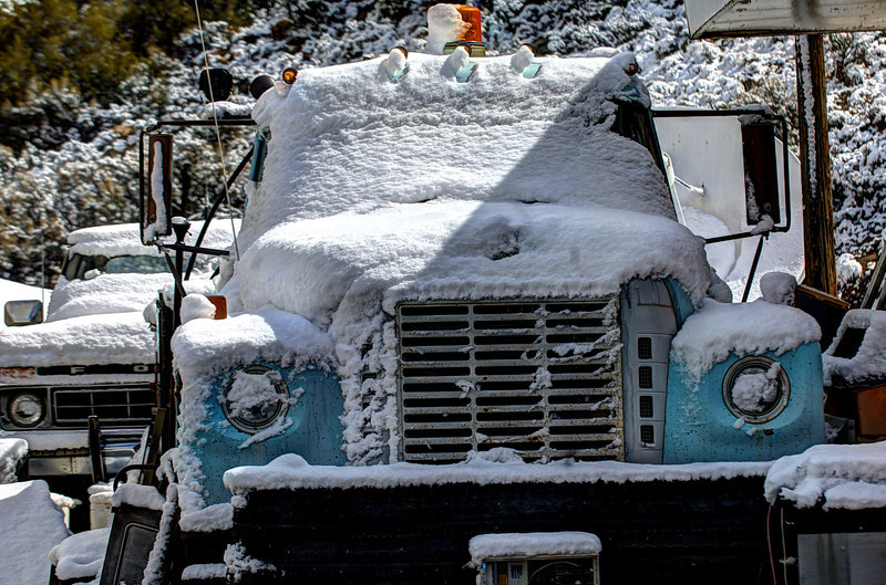 Fluffy truck