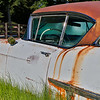 Caddy in the Meadow