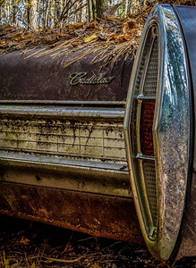 Caddy Tail Light