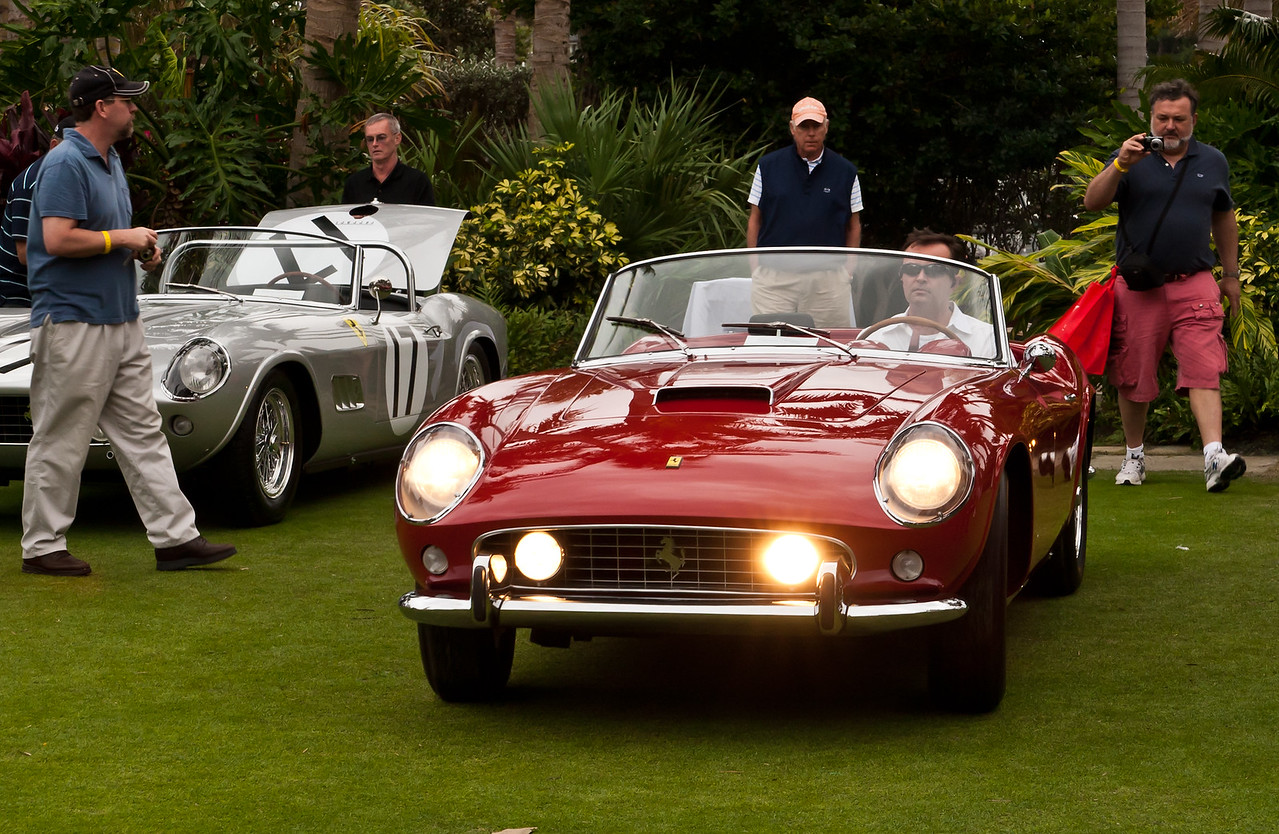 Ferarri 250 GT California Spyder leaves