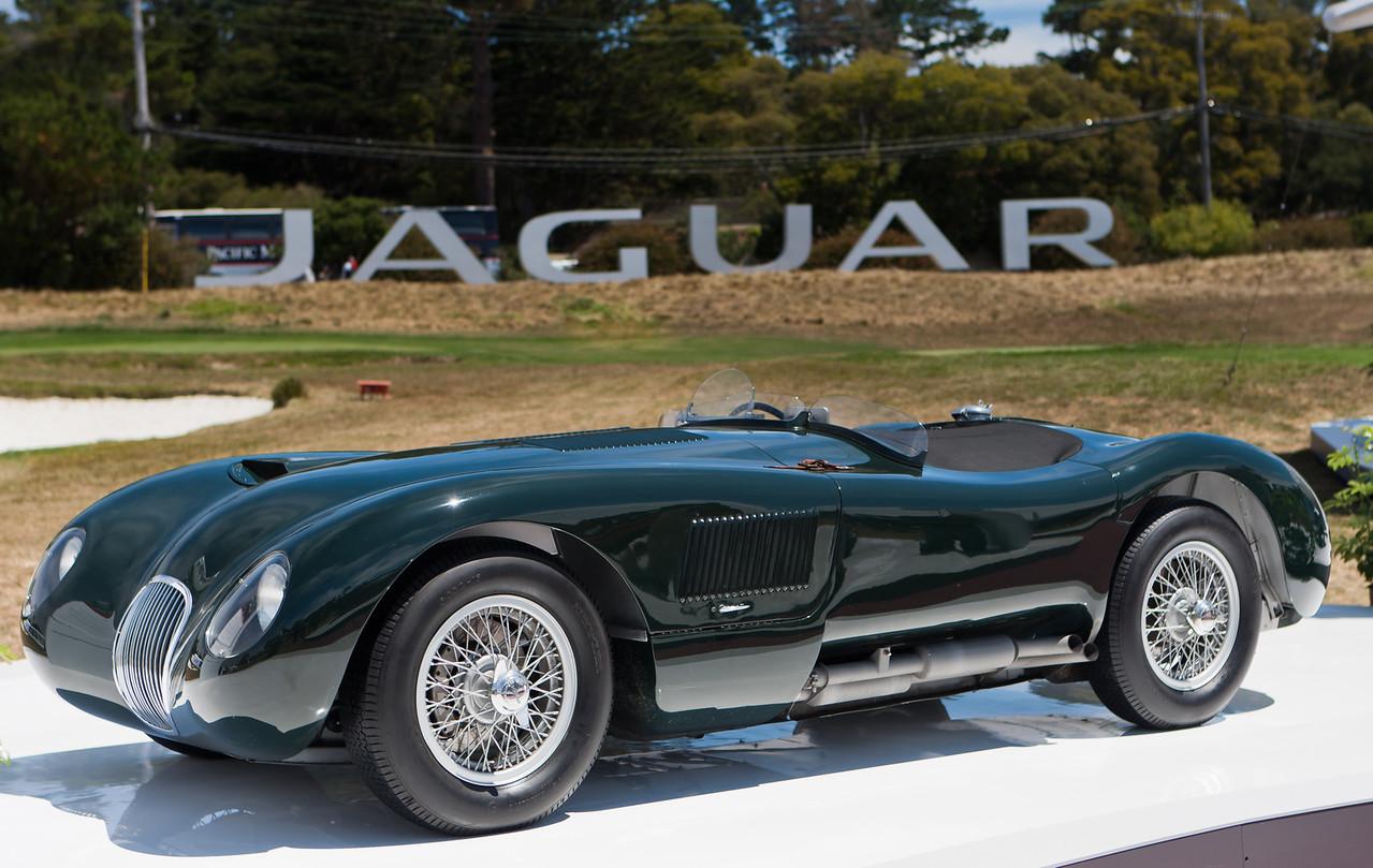 C-Type Jaguar