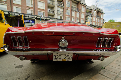 Another tail shot of a 1968 Fastback- For Paul Pederzini, the owner!
