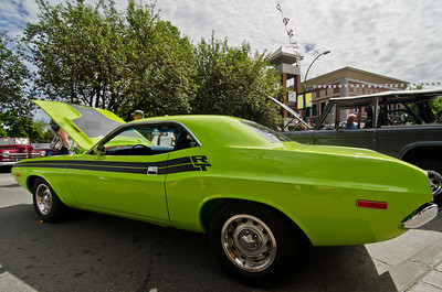 1974 Dodge Challenger.  As green as you'd like it.