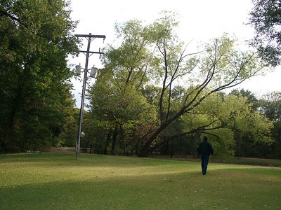 Here's part of the lawn, pond, and the power lines that served the property.  We had our own huge power supply coming in that could have served several houses.  You should have seen how many power outlets we had in one big room: 25!