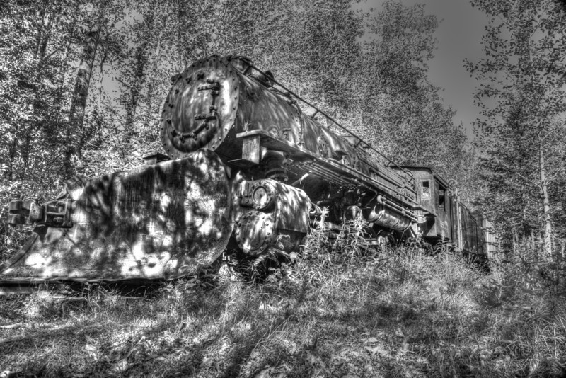 Engine 195 a Mikado 2-8-2 <br /> narrow gauge locomotive was originally built in 1943 to be used by the United States Army to transport men and equipment to build the Alaskan Highway. The engine now sits on an abandoned siding of the White Pass and Yukon Railroad in Skagway Alaska.