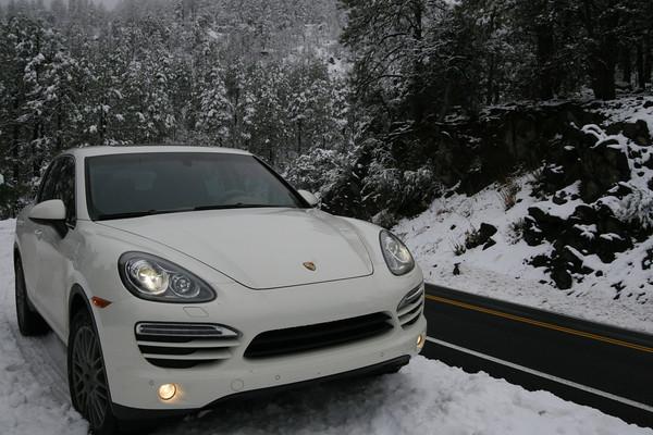 Cayenne in Snow