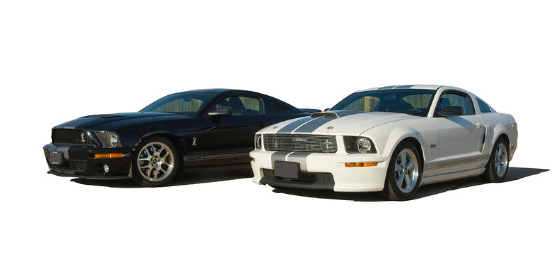 Shelby GT 500  and GT 350