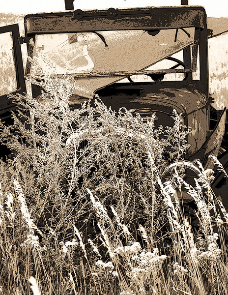 An early Ford service truck, stripped of some parts is overgrown by weeds in a pasture near Regan, North Dakota