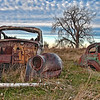 A pair of 1940 era Fords slowly returning to the earth, rusting away in a pasture east of Wilton