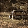 A 1963 Ford Fairlane 4-door parked in a grove of trees east of Wilton