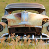 It looks like its mouth is open and it's teeth bared. A 1950's vintage Pontiac rests in a pasture near Regan, North Dakota.