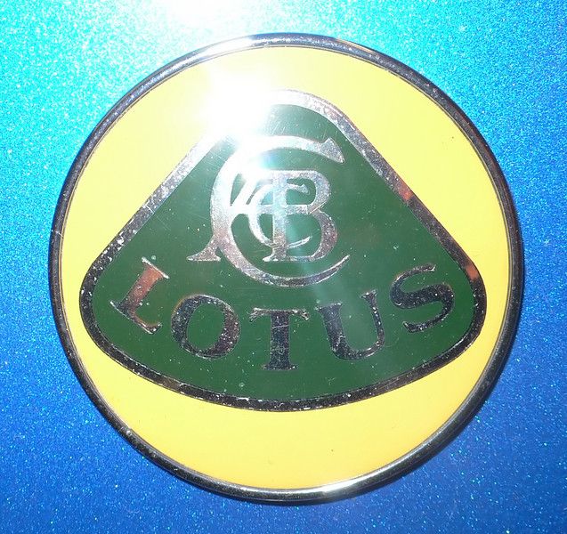 The LOTUS logo from the front hood.