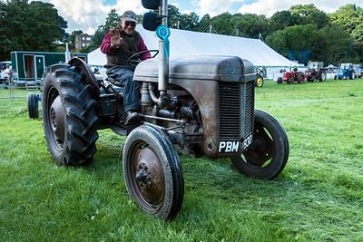 2017 Show – 1955 Ferguson TEF 20 Tractor