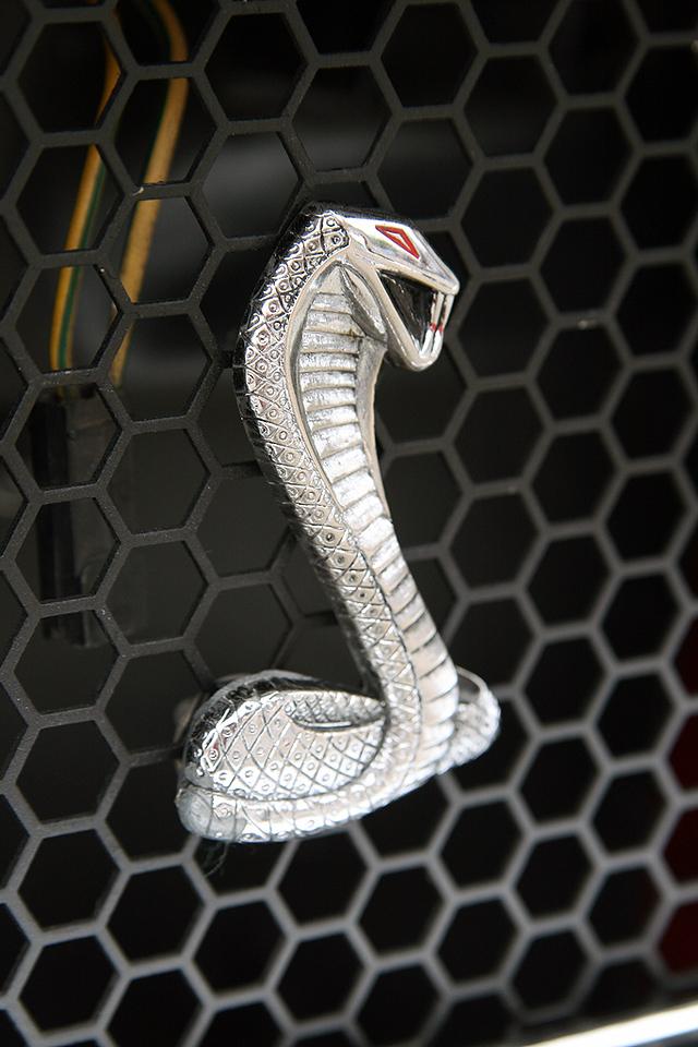 Cobra Mustang Logo