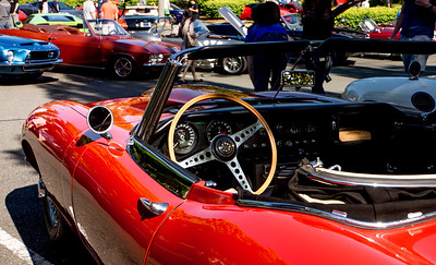 Corvair and Exotics