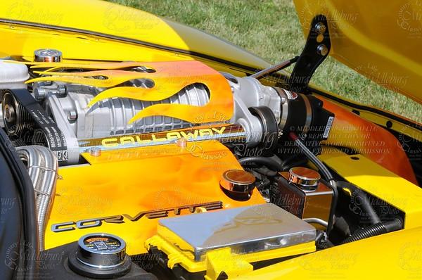 Corvetteshow0810189 (2)