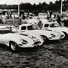"1962 Le Mans – Cunningham Lightweight Jaguars (Photo credit:    <a href=""http://www.jaguarheritage.com"">http://www.jaguarheritage.com</a>)"