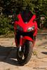 Elisif_20090815_0311