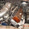 Bronze Mustang 5-22-16 (13)