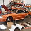 Bronze Mustang 5-22-16 (2)