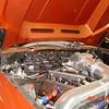 Bronze Mustang 5-22-16 (15)