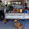 DIY speaker boxes for Jeep Cherokee cargo barrier to do Portmans Vic High Country 4x4 camping.