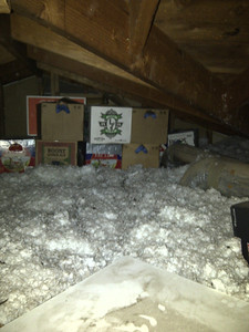 A look at where the attic meets the garage. These are empty beer bottle boxes in front of the garage, in the attic.