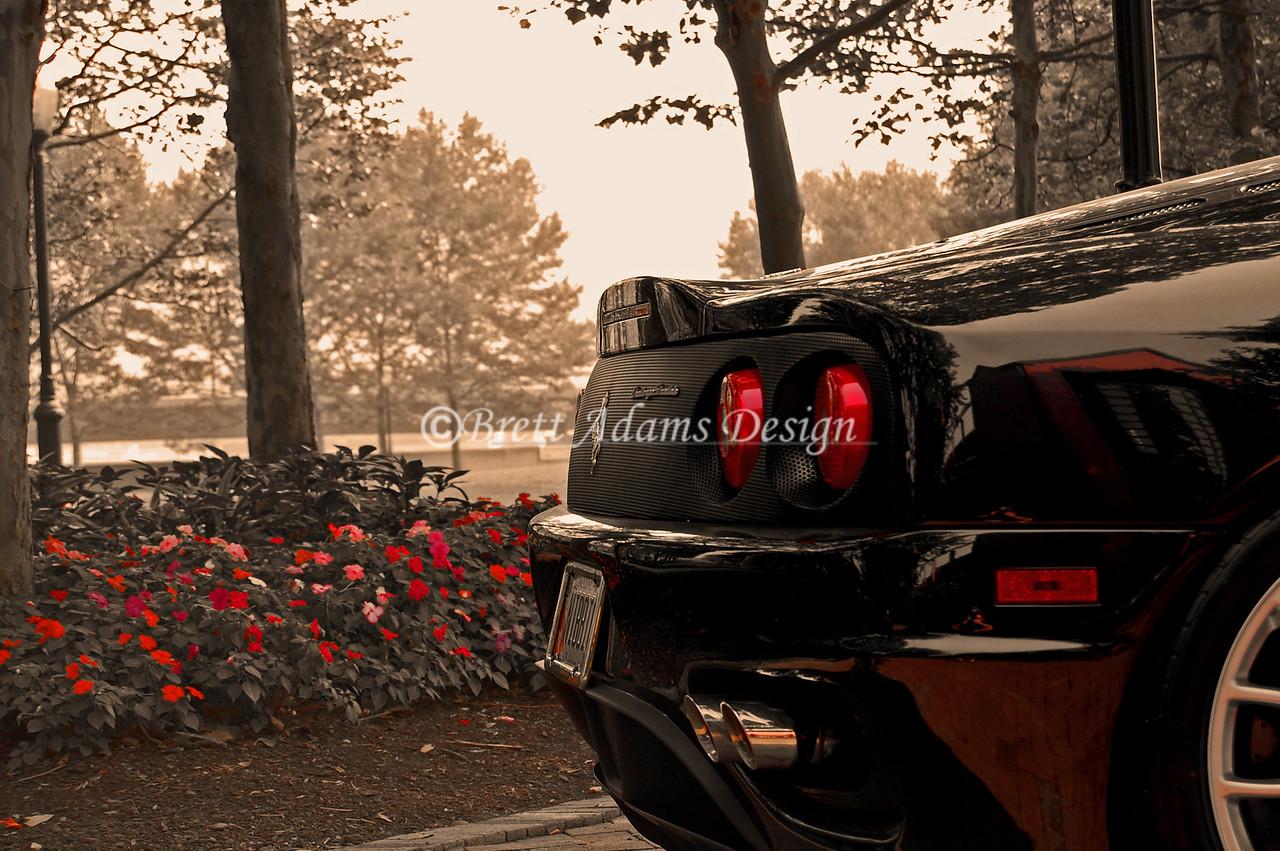 Ferrari 360 Challenge Stradale<br /> Corning, NY Art of Ferrari