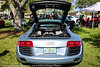 Festivals of Speed at Vinoy Park 08MAR2015-158