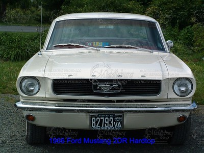 The End..........Ford Mustang