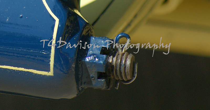 watermark will not appear on final print