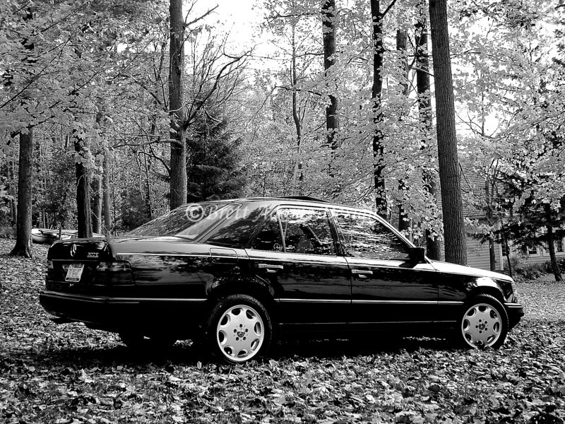 1988 Mercedes Benz 124 300E - Fall