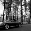 Porsche 911 C4S - Black and White in the pines