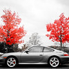 Porsche 911 C4S - Emerson Park, Auburn NY