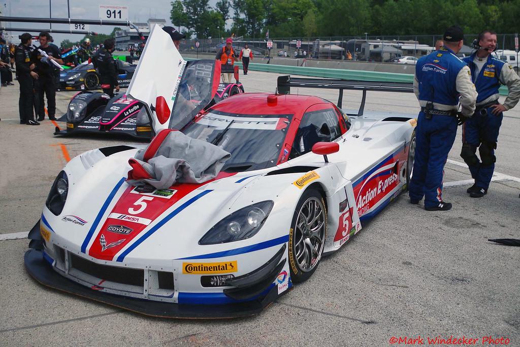 P-Action Express Racing Corvette DP