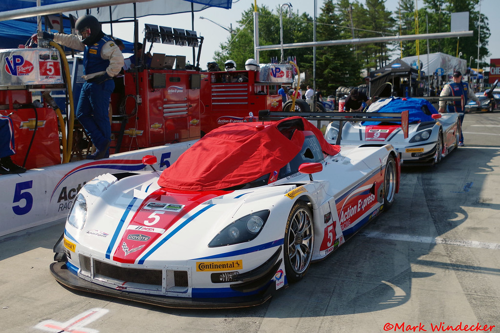 P Action Express Racing Corvette DP