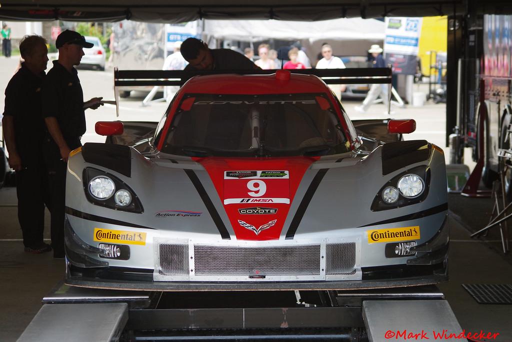 P Action Express Racing Corvette  DP