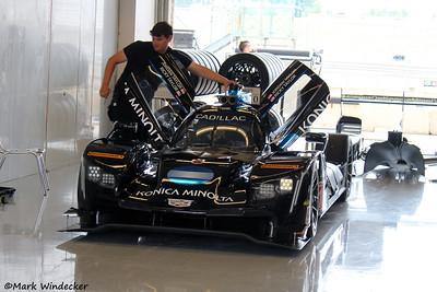 P- Wayne Taylor Konica Minolta Racing Cadillac DPi