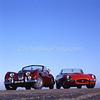 Jaguar XK & E-type 255