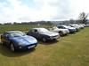 Some Jaguars