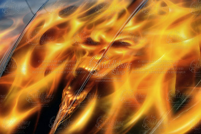 TruFlame 2002 Chevy SS Xtreme Winner