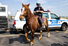 NYPD Mounted Police at LaGuardia Airport Open House.