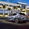 Lexus UX - 2 (web)