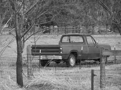 Dodge pickup out to pasture.