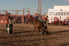 Barrel racing - corners like a MINI!